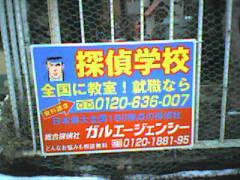 20050129.jpg