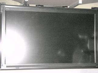 2006123108.jpg